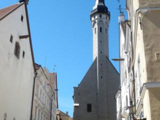 Tallinn Town Hall.