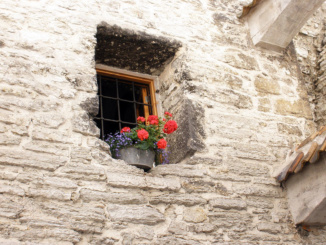 Flower Pot window decor.