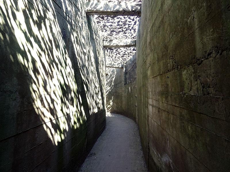 Navigating the Bunker Network