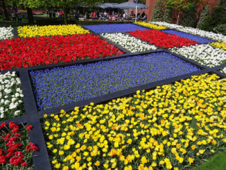 Dutch Design Flower Mosaic
