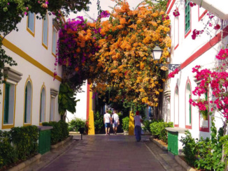 Everything is blooming along the streets of Puerto de Mogan.