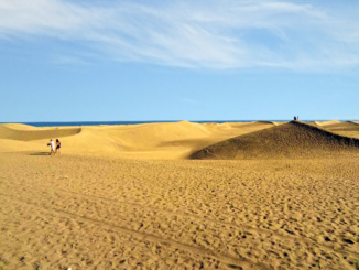 The dunes take their shape from the wind, how beautiful.