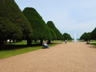 The Great Fountain Garden showcasing the larger than life yew trees dating back to the late 1600s