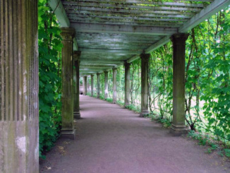 Taking a nice stroll through Catherine's Park that takes you back in time