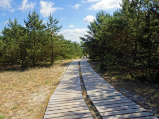 Nice walking path to the dunes
