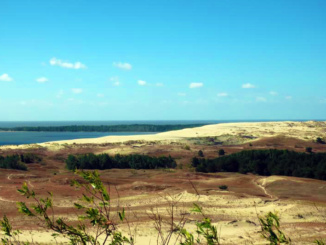 A wonderful view of the Parnidis Dunes flowing into the Baltic Sea