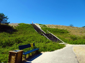 Staircase over the massive dune to the Blue Flag beaches of Juodkrante